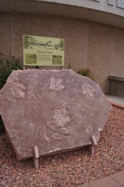 Bij de dam gevonden gesteente