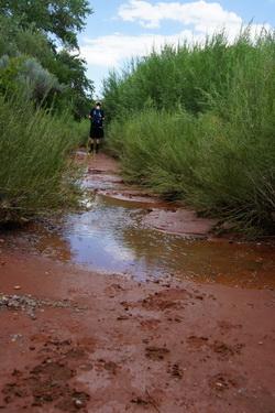 Langs de rivier ook weer terug, met veel modder