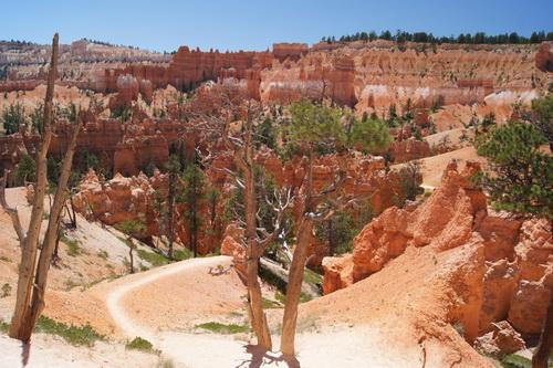 Het uitzicht in Bryce canyon is geweldig