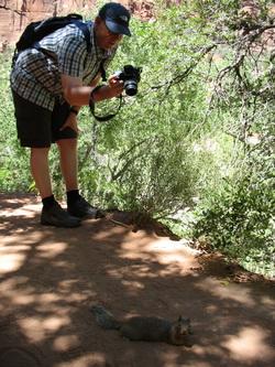 Bouko fotografeert een squirrel