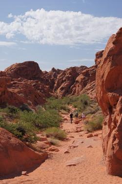 Op weg door de Petroglyph Canyon