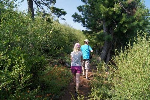 Trail richting Crane Flat Fire Lookout