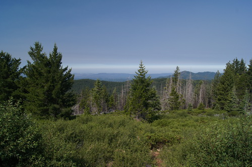 Uitzicht vanaf Crane Flat Fire Lookout